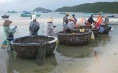 Bãi Khem - mùa cá trích
