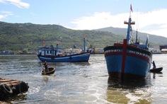 Ngư dân phải bơi vào làm thủ tục