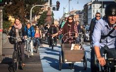 Cả thành phố đạp xe