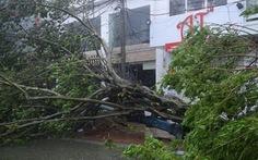Cơn bão số 11 lại gây sự cố lưới điện 500KV