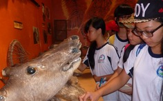Ngoại khóa tìm hiểu động vật hoang dã
