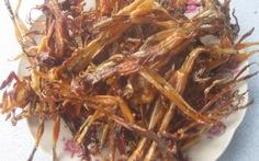 Khô nhái, món ngon vùng Bảy Núi