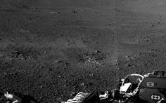 Vi khuẩn Trái đất chu du tới sao Hỏa
