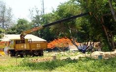 Ngăn chặn xây dựng trái phép trong sân golf Phan Thiết