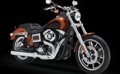 Harley triệu hồi 3.361 môtô FXDL Dyna Low Ride