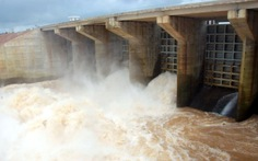 Thủy điện nợ 18 tỉ đồng tiền dịch vụ môi trường rừng