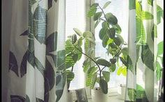 Chọn rèm cửa độc đáo cho không gian sống