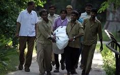 Sinh viên Ấn Độ bị hổ trong vườn thú cắn chết dã man