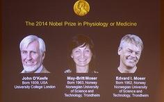 Nobel Y Sinh 2014: khám phá hệ thống định vị trong não