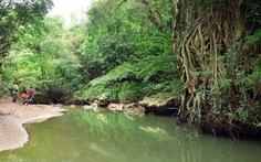 Du khách được tham quan vườn thực vật Phong Nha từ 15-10