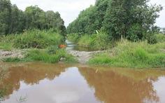 Khẩn trương đắp đập giữ nước cho rừng tràm U Minh Hạ