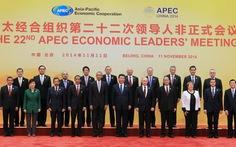 Việt Nam đề cao nhu cầu duy trì hoà bình trong APEC
