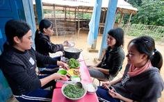 Dinh dưỡng và sức khỏe giáo viên
