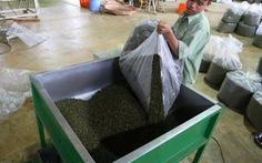 Lâm Đồng kiến nghị Chính phủ xóa tin đồn nông sản VN nhiễm dioxin