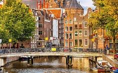 Báo cáo học bổng du học Hà Lan 100% học phí
