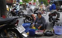 Chứng khoán Việt Nam sẽ tăng kịch trần 7 năm