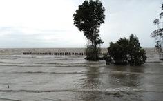 Khắc phục tình trạng sạt lở biển ở Kiên Giang