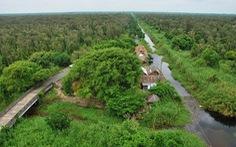 Tạm đóng cửa rừng tràm U Minh Hạ đề phòng cháy rừng