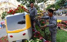 120.000 chậu hoa tươiở đường hoa Hàm Nghi