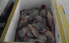 Tạm đình chỉ đơn vị nấu ăn cho trường tiểu học Long Bình.