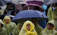 Chùm ảnh người Hàn Quốc đội mưa tưởng niệm thảm họa Sewol