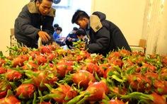 Tìm đầu ra cho trái cây:Phải xóa mù thông tin