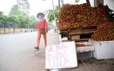 Saigon Co.op hỗ trợ tiêu thụ 800 tấn trái vải tươi