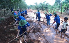 Nhiều hoạt động tình nguyện hè năm 2015