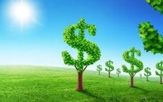 Phát triển kinh tế xanh là con đường tất yếu của nền kinh tế