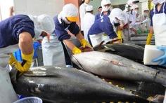 Xuất khẩu cá ngừ sang Nga tăng 218%