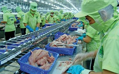 Kiến nghị bỏ thủ tục đăng ký xuất khẩu cá tra