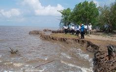 Cà Mau chống sạt lở 100 km đê biển Tây