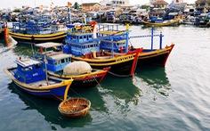Xây dựng tiêu chí quy hoạch trung tâm nghề cá lớn