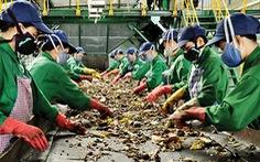 Xuất hiện người nhận là chủ gói vàng trong nhà máy rác