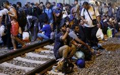 EU có thể ép các nước thành viên nhận người tị nạn