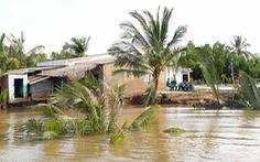 TP.HCM có 47 điểm sạt lở bờ sông, kênh rạch