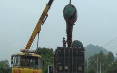 Sẽ ngăn chặn chuyệnđào cây thốt nốt bán cho Trung Quốc