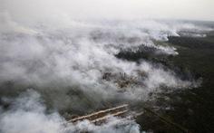 Indonesia làm mưa dập cháy rừng