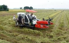 Nông nghiệp cần thu hút các doanh nghiệp mọi thành phần