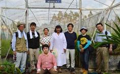 Lúa ma huyền thoại - Kỳ 3: Người Nhật đi tìm lúa ma