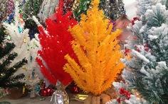 Noel ở Sài Gòn có thêm thông vàng, thông đỏ