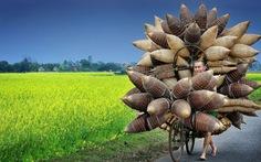 Nhiếp ảnh gia Việt đoạt giải thi ảnh du lịch quốc tế