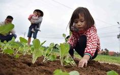 Một ngày làm nông dân Hội An của bé Riley Stirling 4 tuổi