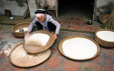 Sàng gạo
