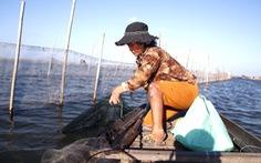 Người đàn bà vá lưới bằng miệng