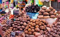 Peru nghiên cứu trồng một số giống khoai tây trên sao Hỏa