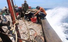 Đà Nẵng phổ biến luật cho vùng biên giới biển