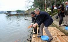 Đại sứ Mỹ thả cá chép tiễn ông Táo về trời