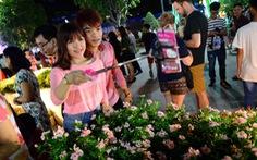 Khai mạc đường hoa Nguyễn Huệ vào 28 tết