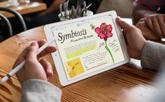 Máy tính bảngiPad Pro 9,7-inch mới ra mắt